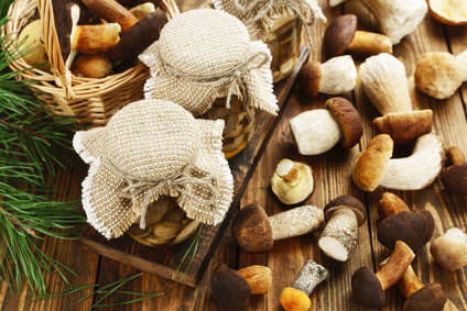 Nakládané houby