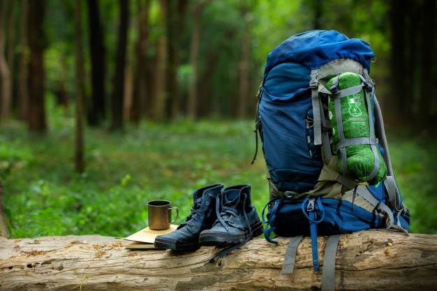 sport-shoes-backpack-color-blue-timber-forest_54870-56