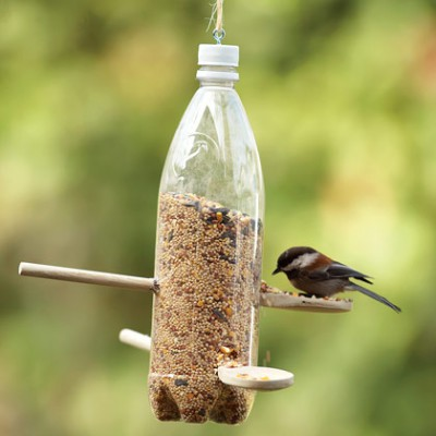 backyard-bird-feeder-spring-craft-photo-420-ff0507efda01