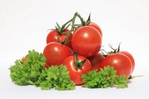 Původ rajčat