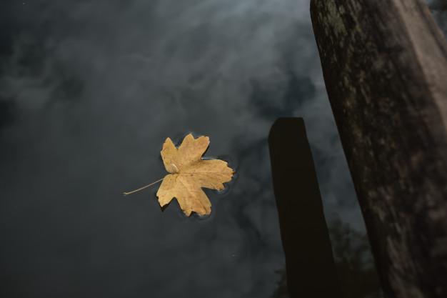 Podzimní deprese dokáže znepříjemnit žití.