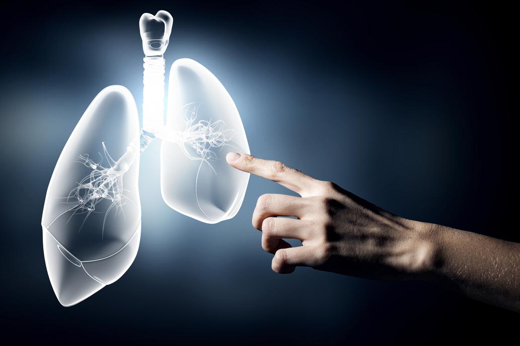 Při detoxikaci plic se zaměřte i na střevní mikrobiom.