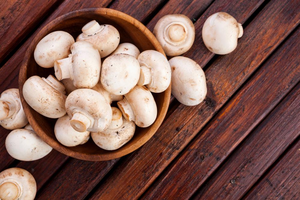 Žampiony patří mezi nejoblíbenější houby
