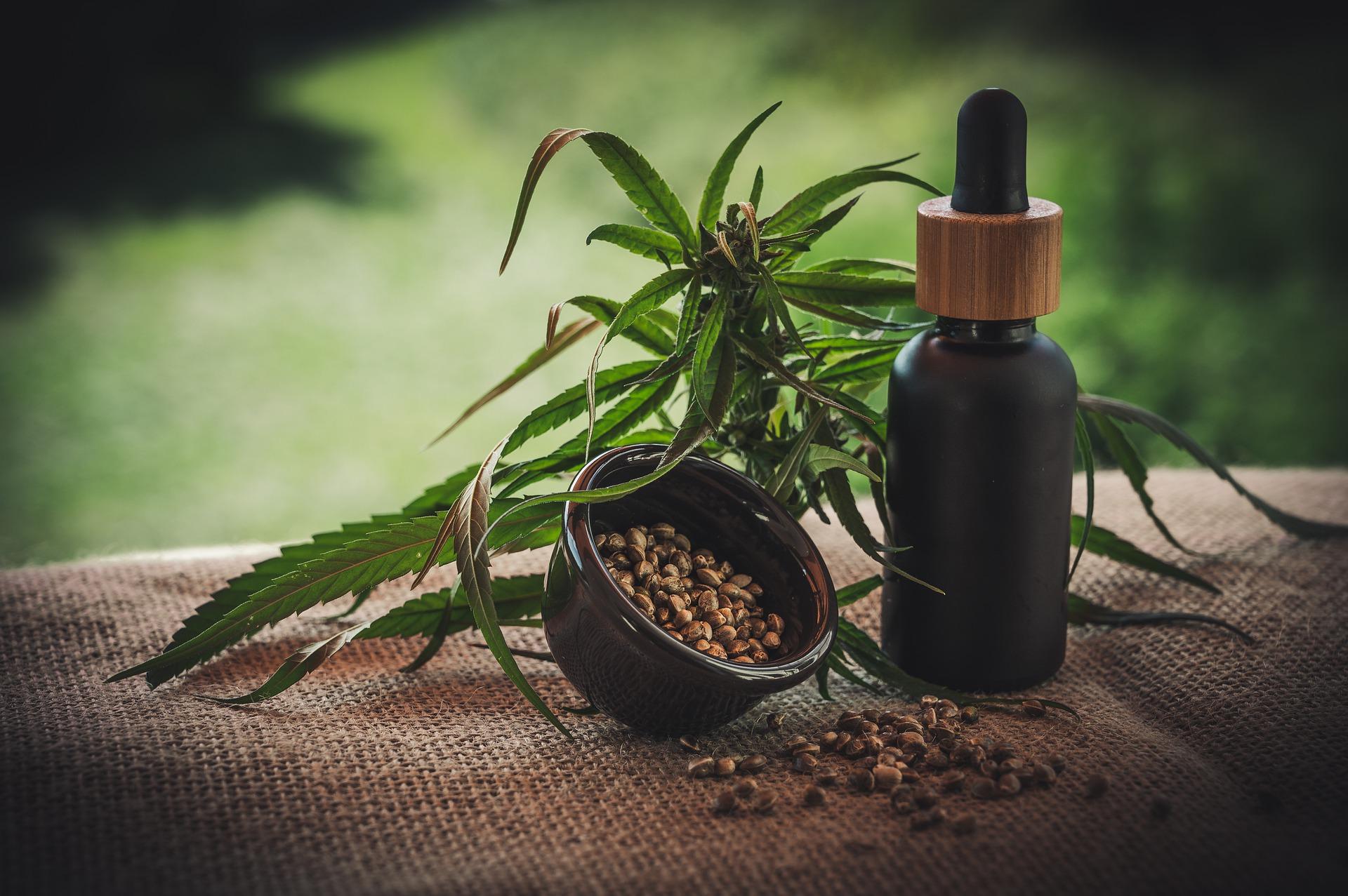 Konopí seté lze zužitkovat k výrobě tinktur, mastí anebo olejů.