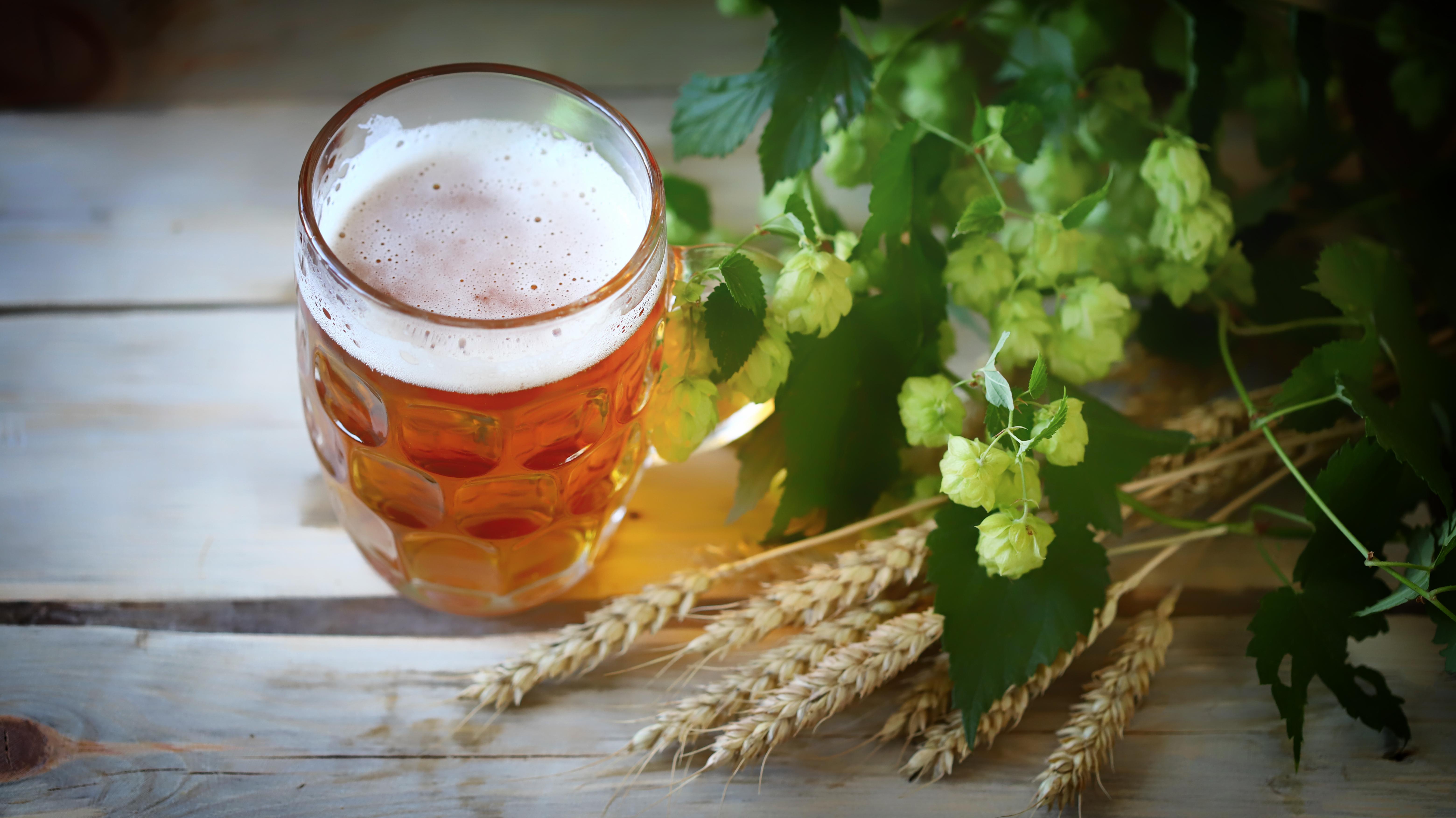 České pivo patří mezi ty nejchutnější na světě.