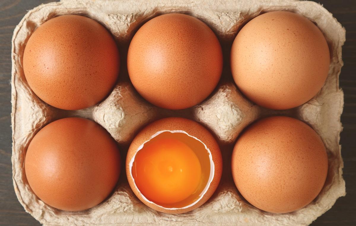 Vaječný žloutek je bohatým zdrojem lecitinu