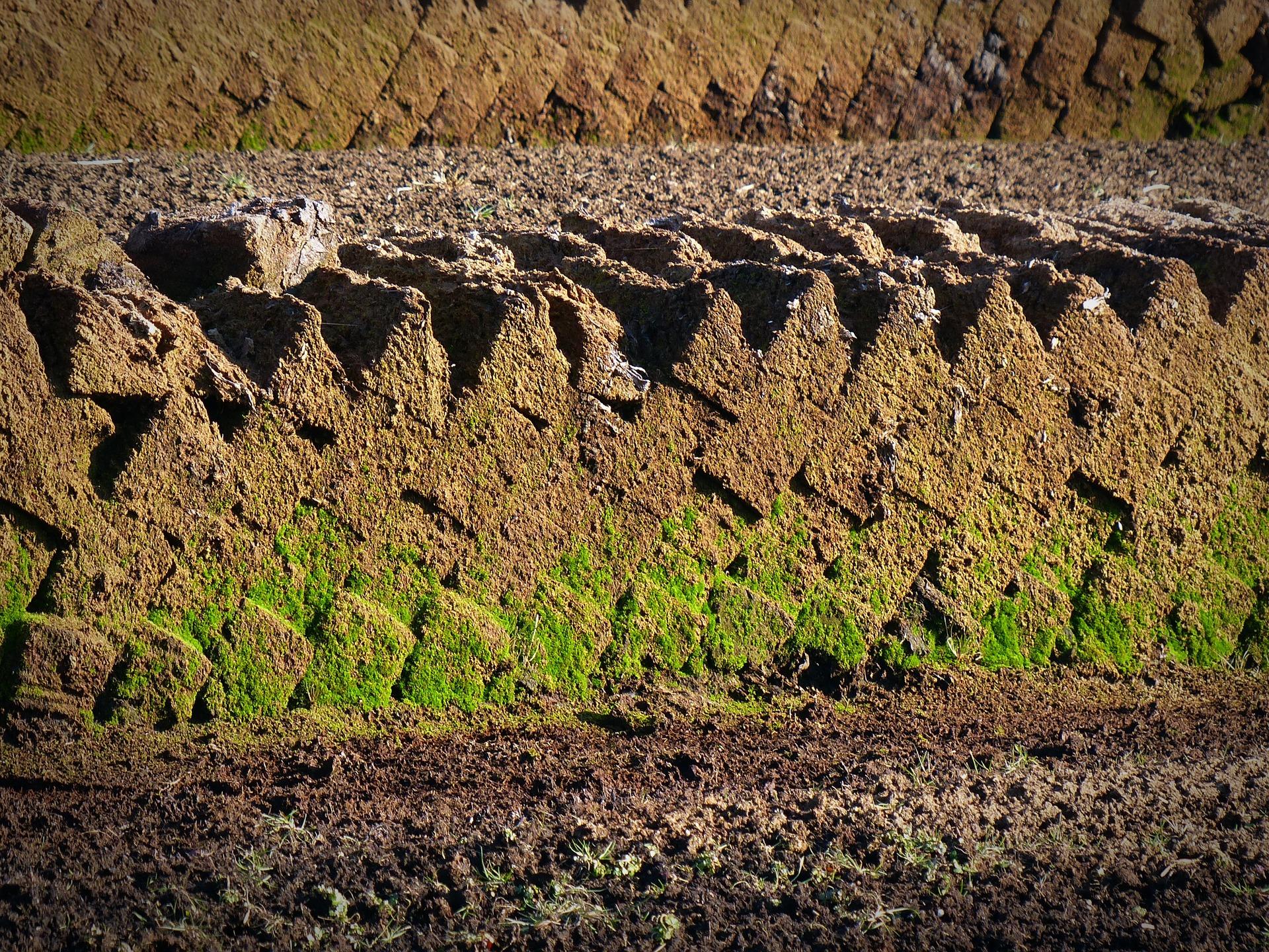 Rašelinové koupele jsou možné díky bohatým zdrojům rašeliny na Šumavě a v Jižních Čechách.