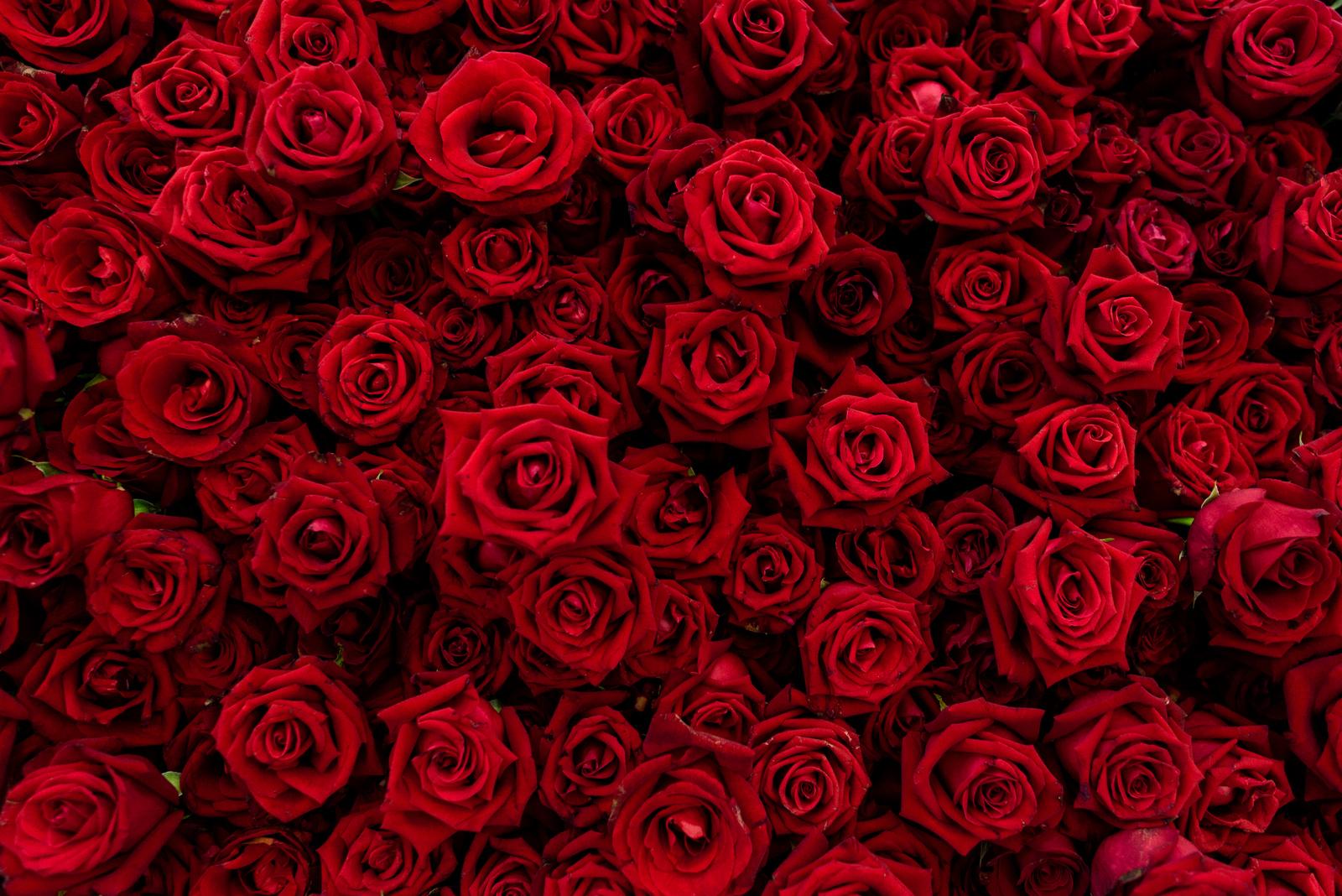 Dárek na Valentýna potěší