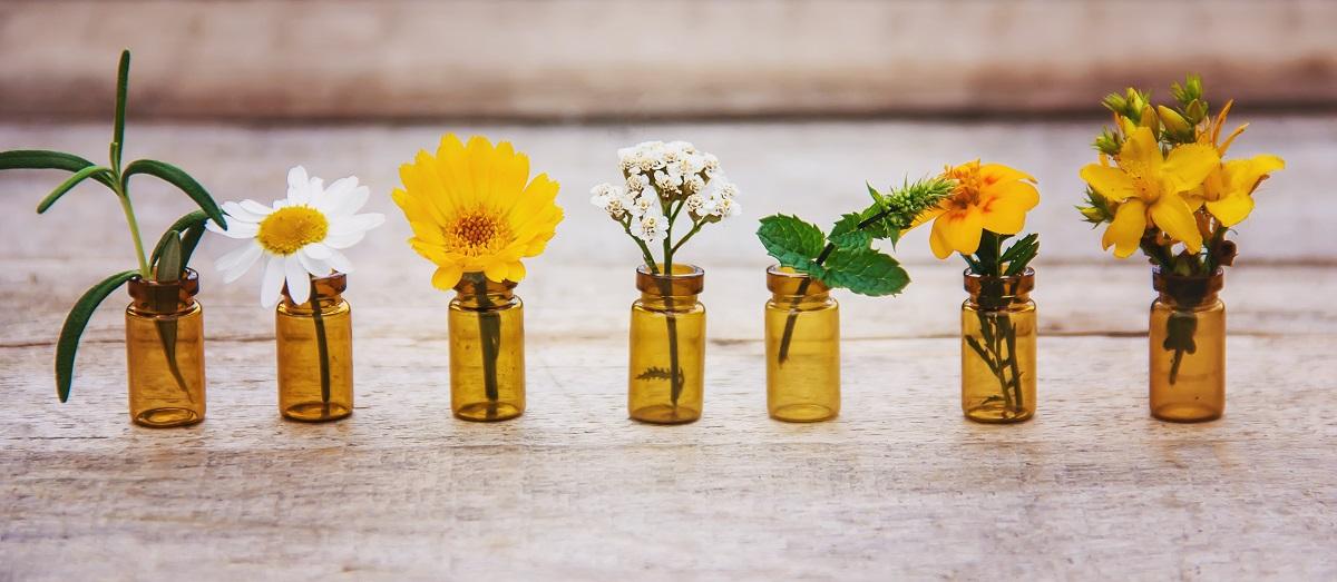 Některé byliny a esenciální oleje mohou při porodu značně pomáhat