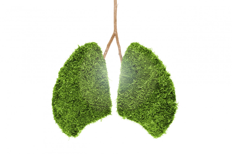 Naučte se používat své plíce, dýchání je důležité